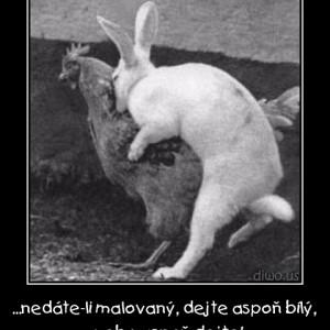 Velikonoce - Aspoň dejte!