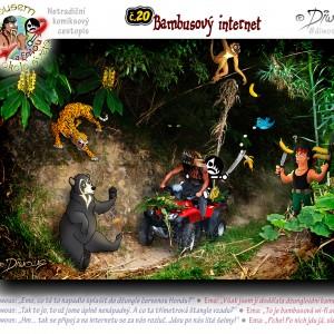 č.20 – Bambusový internet