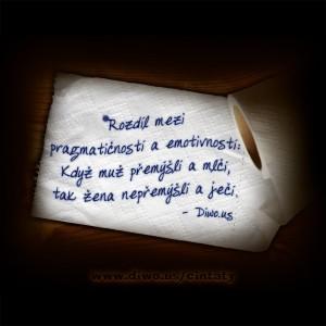 Rozdíl mezi pragmatičností...