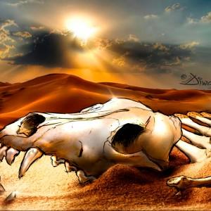 Steppe Wolf bones (Namibia)