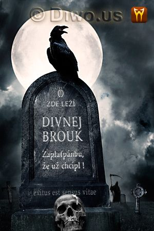 Divnej Brouk - náhrobní kámen, havran, měsíc, smrtka v kápi s kosou, hřbitov, hrob, lebka, noc, noir, Exitus est sensus vitae