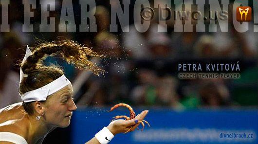 Divnej Brouk - Petra Kvitová - Czech tennis player, next World number one, No.1, WTA, yellow scorpion, I FEAR NOTHING!, NEBOJÍM SE NIČEHO!
