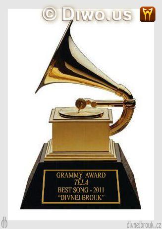 divnej brouk - grammy award, cena, udělování, Národní akademie hudebního umění a věd USA, zlatý gramofon, skupina Těla
