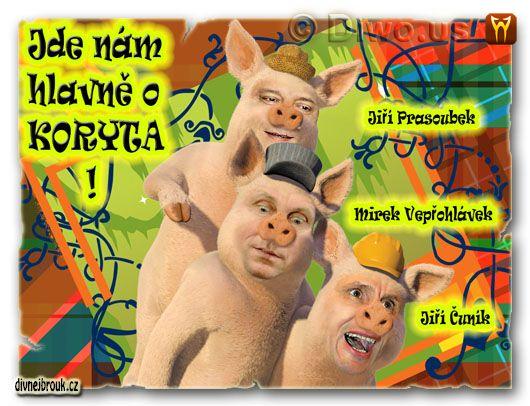 divnej brouk - Tři čuníci, 3 cunici, Jiří Jyrka Paroubek, Mirek Topol Topolánek, Jiří Čunek, pohádka, prasátka
