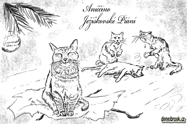 divnej brouk - kresba, kočka, kocour, vánoční dáreček, stromeček, koule, ozdoba