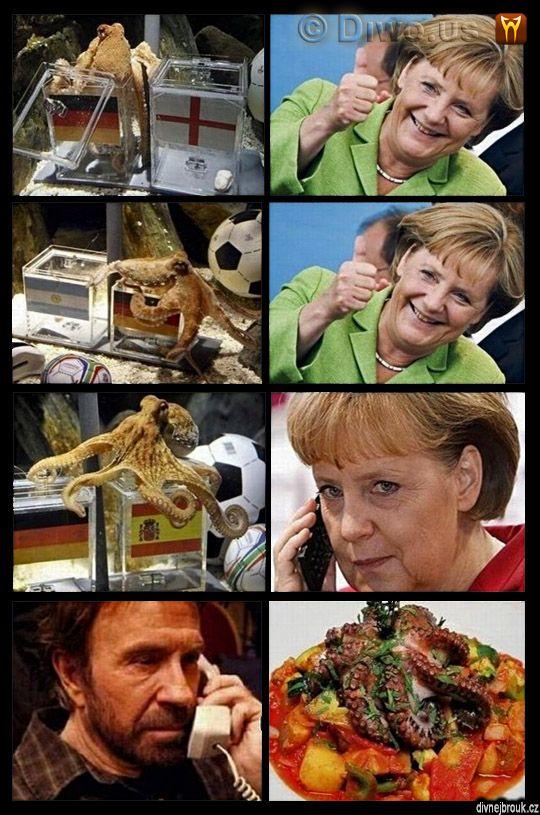divnej brouk - chobotnice Paul, Chuck Norris, Angela Merkelová, Německo, Euro ME 2008, MS 2010 fotbal