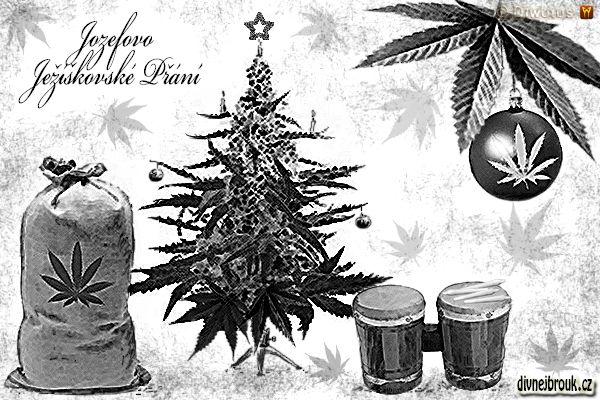 divnej brouk - kresba, vánoce, stromeček, vánoční dekorace, kytka, tráva, marihuana, list, pytel, bongo, bonga, joint, brčko, špek, hulení