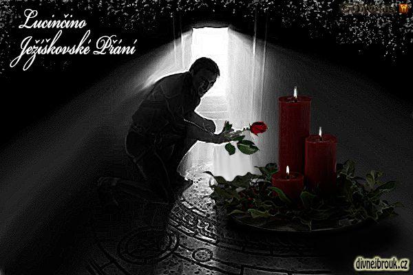 divnej brouk - kresba, vánoce, dekorace, adventní věnec, svíčky, cesmín, větvičky, tajemný přítel, růže, světlo dveře, tajemná komnata
