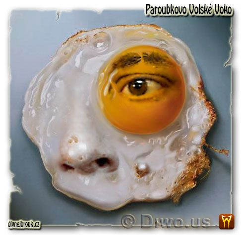 divnej brouk - Paroubkovo volské voko, Jiří Paroubek, volske oko, smažené vajíčko, žloutek, bílek, bradavice, nos