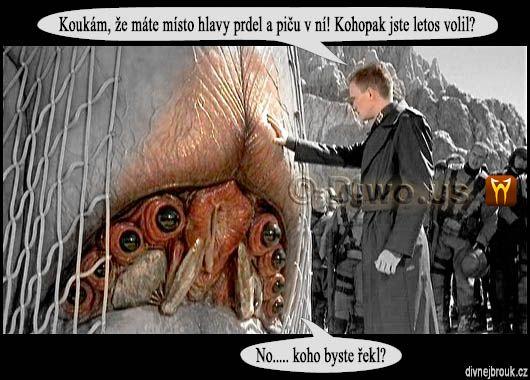 divnej brouk - Jiří Paroubek volič, volby, sci-fi monster, prdel, píča
