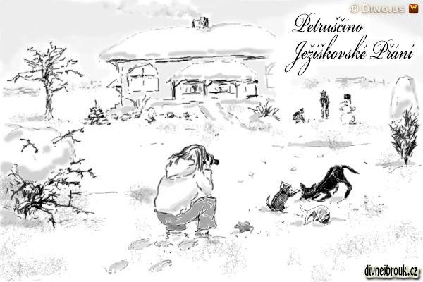 divnej brouk - kresba, zimní zasněžená zahrada, rodinný domek, sněhulák, domácí zvířátka, kotě, kočička, pes, pejsek, foťák, fotoaparát