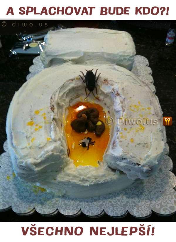 Diwous - Toaletní dortíček, záchod, dort, hajzlík, hovno, humor, mouchy, Toaletní dortíček, vtip, zábavné a žertovné dorty,