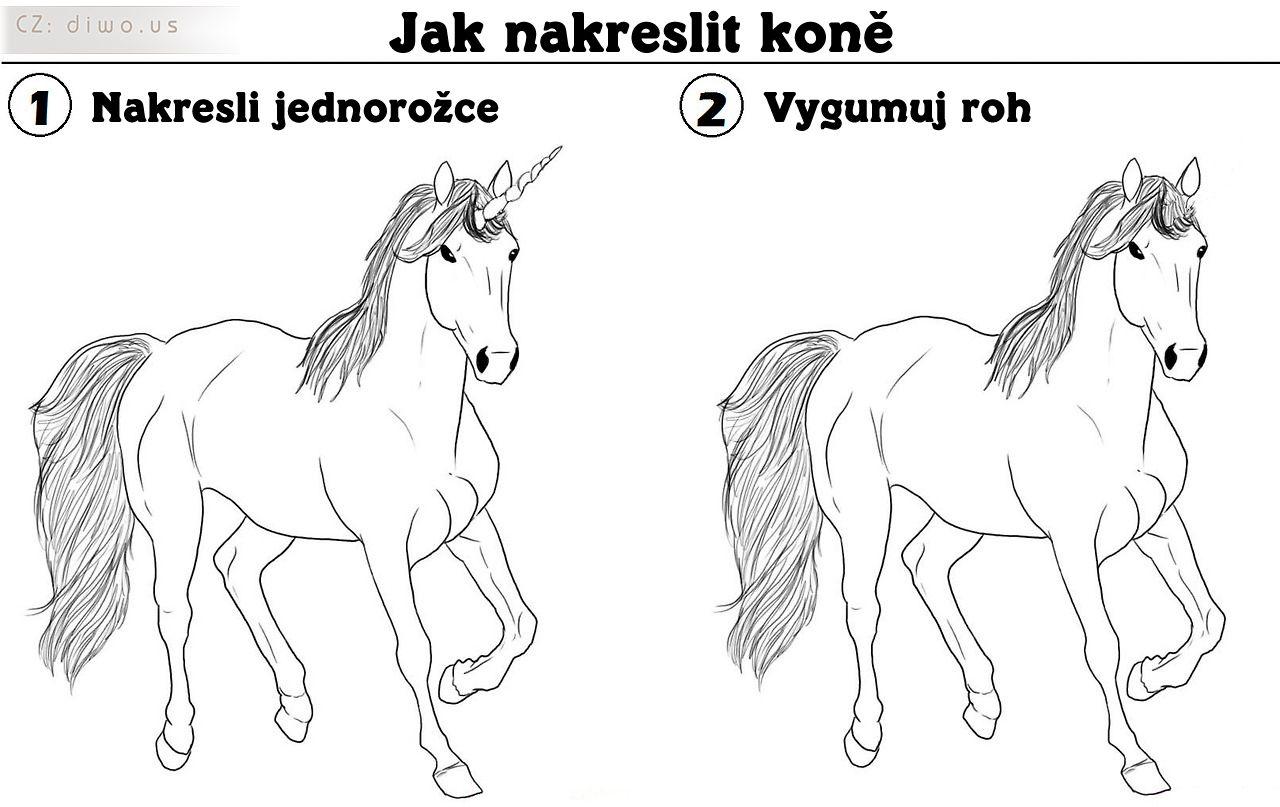 Diwous - Jak nakreslit koně, jednorožec, kůň, roh, vtip, humor