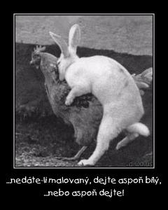 Diwous - Dejte vejce malovaný... nebo aspoň dejte! humor, koleda, králík, slepice, Velikonoce, vtip