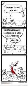 Diwous - pravděpodobnost, kráva, žralok, statistika, absurdita, absurdní humor, vtip, kameňák, moře, zabití, smrt, nebezpečí