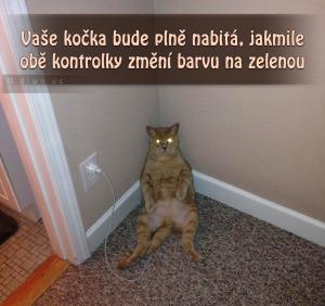 Diwous - Jak nabít Apple kočku iCat, kočka, nabíječka