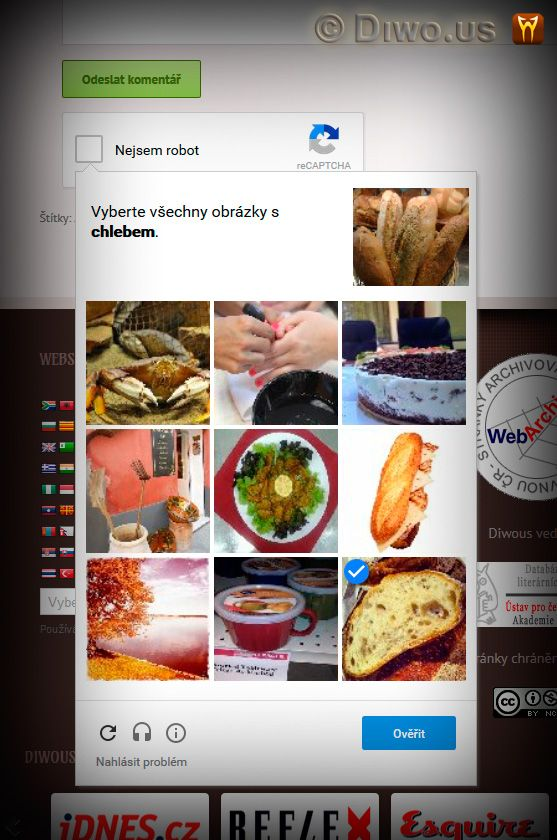 Diwous - Wordpress plugin, No CAPTCHA reCAPTCHA, screenshot, auto-detect language, food images, bread, antispam, check, spambot, spam, robot, protect, login, registration, comment, Google