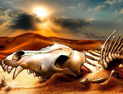Steppe Wolf bones – Namibia, photoillustration