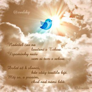 Diwous, @cvrliky, slavný, účet, Twitter, To NEJ z CZ Twitteru, zemřel, odchod, úmrtí, konec, vzpomínka, sleď, sledovaní, follow, přítel, kamarád