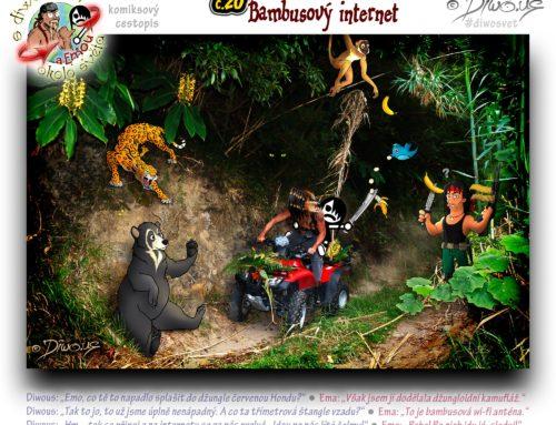 s Diwousem a Emou okolo světa – díl 20 – Bambusový internet