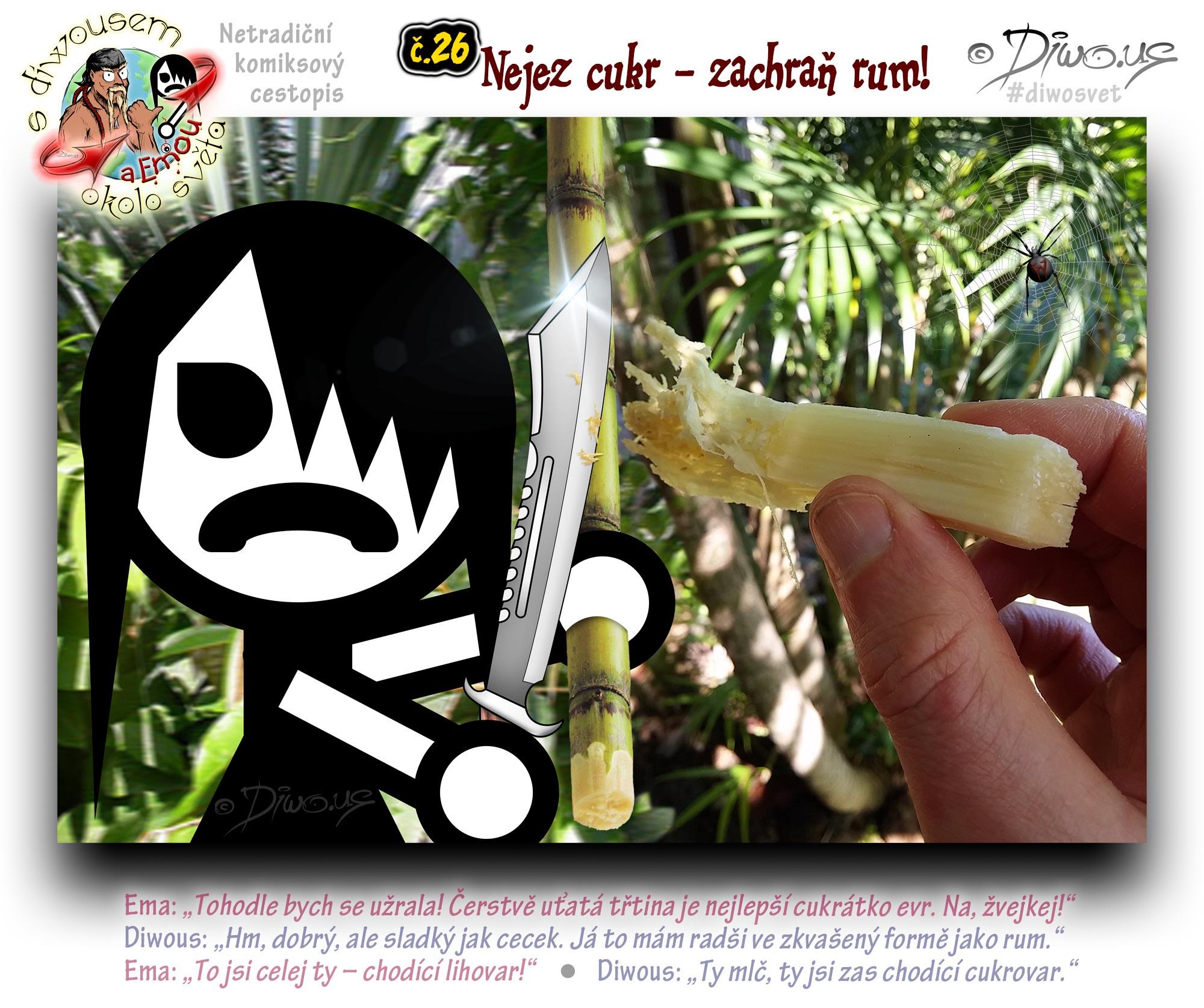Diwous - netradiční komiksový cestopis, Ema, taktická mačeta, džungle, tropy, deštný prales, cukrová třtina, žvýkání, dřevitá dužina, bambus, kapradiny, vegetace, rostlinstvo, flóra, Jamajka, Jamaica, tactical machete, jungle, tropics, rain forest, sugarcane, bamboo, wood pulp, ferns, vegetation